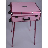 Mobile Light Vanity Case Pink